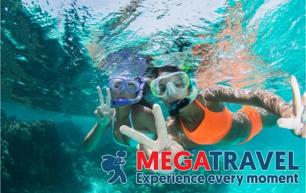 best diving sites in Vietnam 14