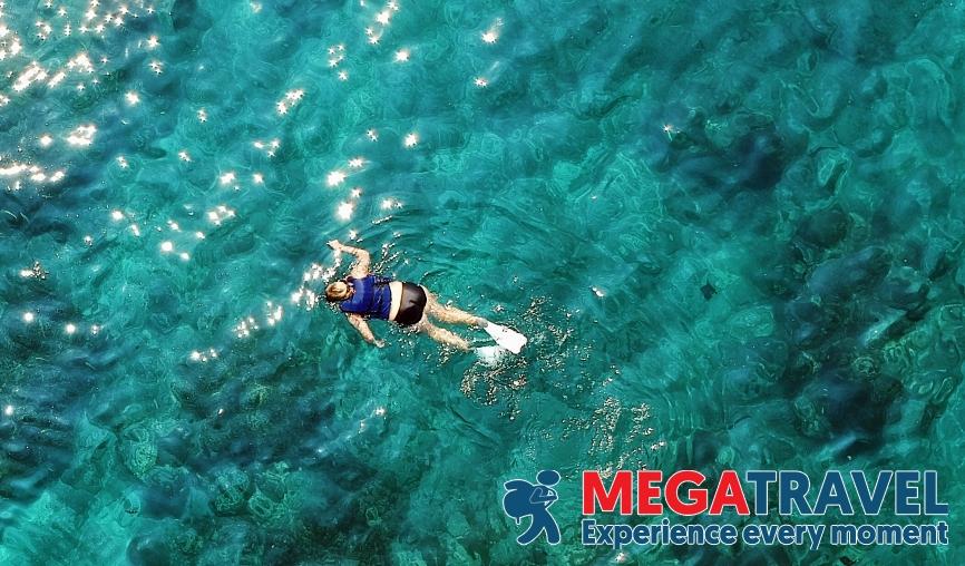 best diving sites in Vietnam 8
