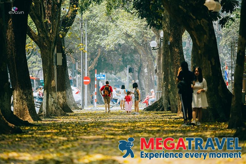 best time to visit Hanoi 8