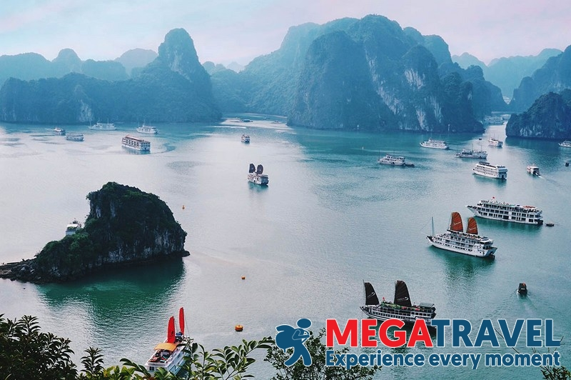 The best one day tour for Halong Bay