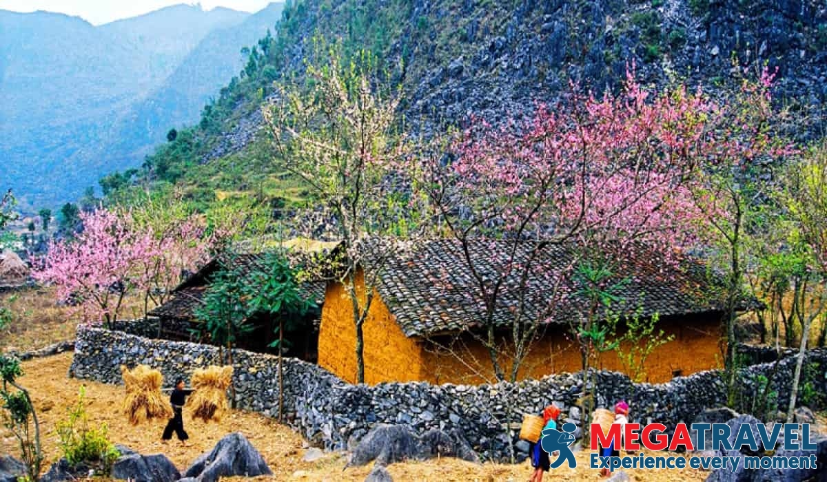 Best time for Ha Giang